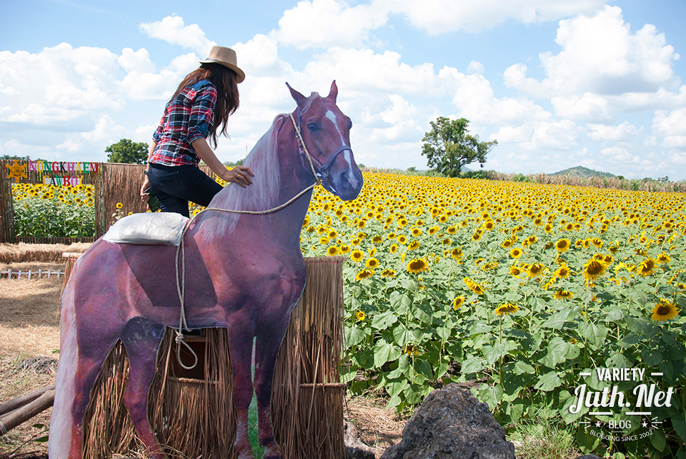Prop เป็นม้า ให้ขึ้นไปนั่งถ่ายรูป