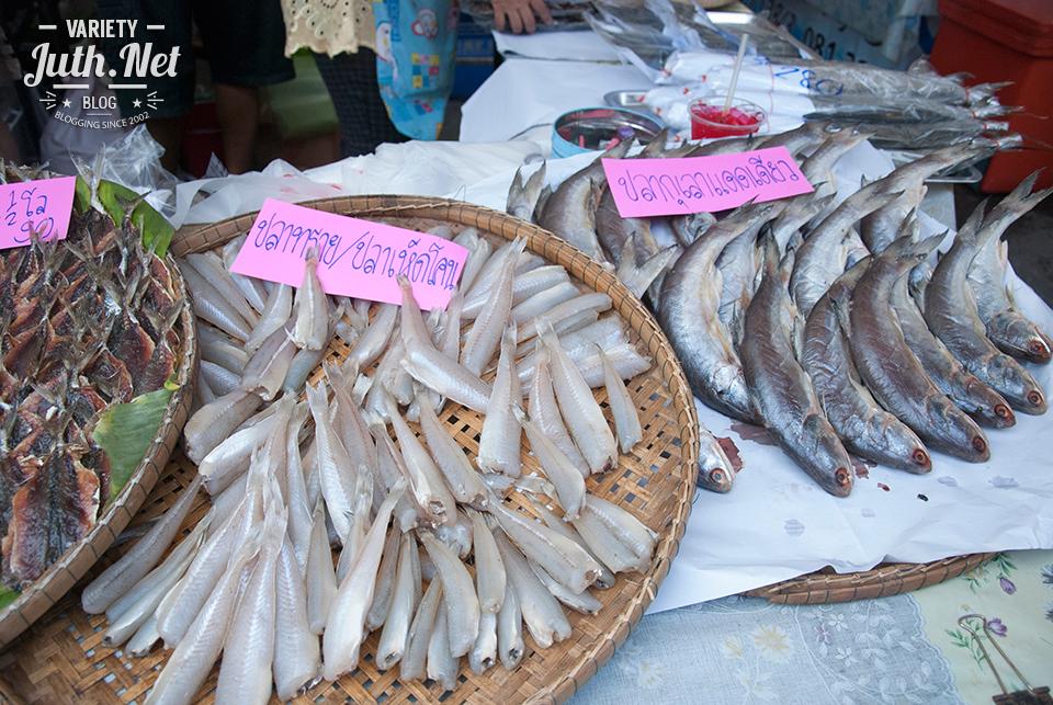ปลาทราย ปลาเห็ดโคน