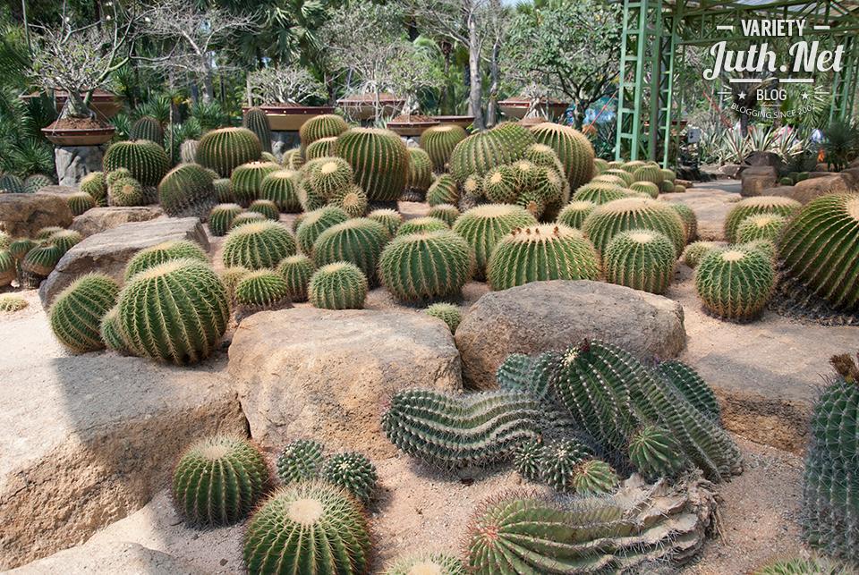 สวนตะบองเพชร