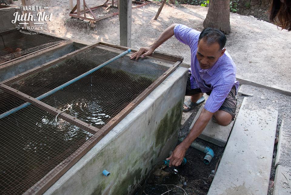 การเปลี่ยนน้ำในบ่อแบบง่ายๆ